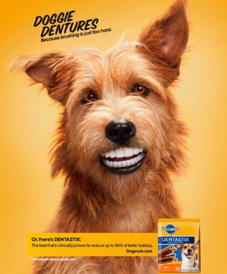 PEDIGREE DENTASTIX: La sonrisa de tu perro - OpenAds