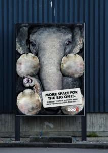 zoo zurich vertical 412x583