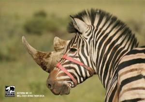 Save the Rhino 1