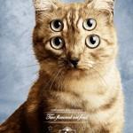 pet show pet food cat 2