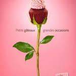 petits gateaux cupcake boutique rose