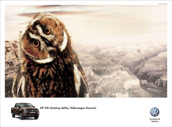 volkswagen amarok owl